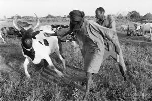 Sudan. Dinka tribe